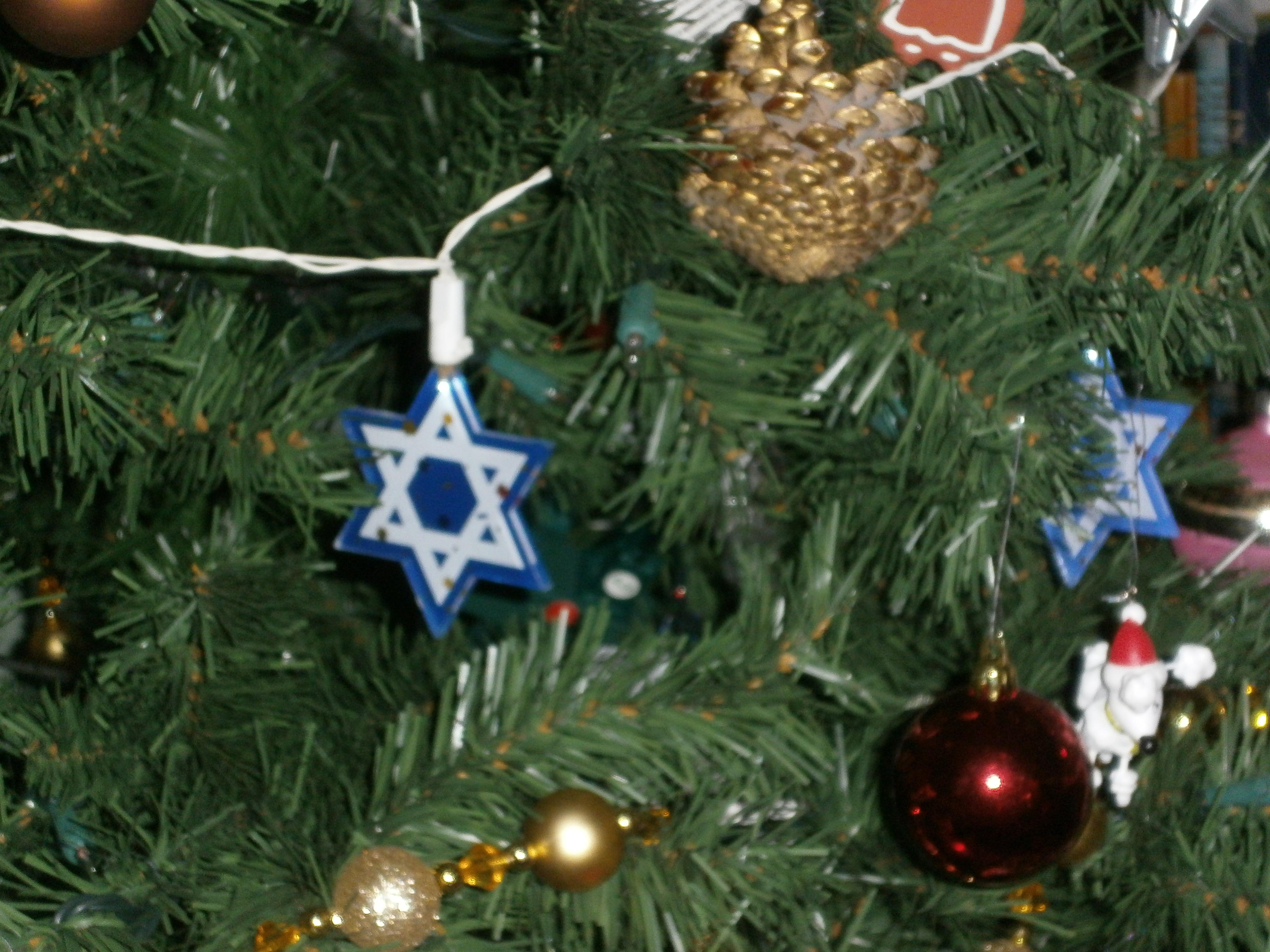 Christmas | Lisa W. Rosenberg